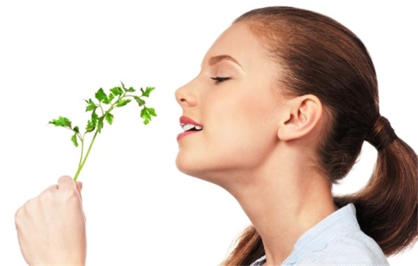 Повелительница свежести – петрушка для лица