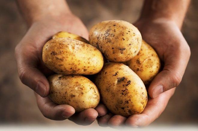 Удивительная польза картофеля для здоровья