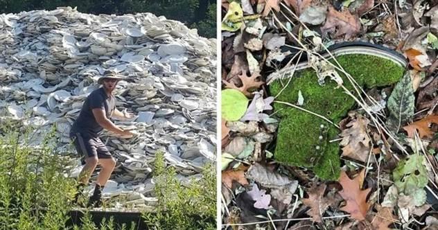 50 любопытных находок, сделанных в лесу ( 51 фото )