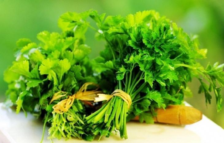 Полезные травы, свойства которых могут неприятно удивить
