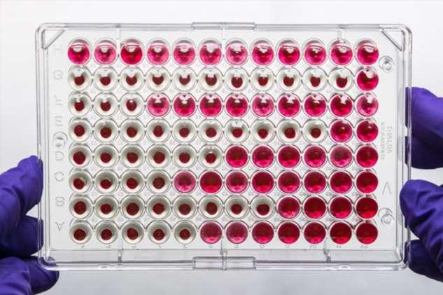 Победа над гепатитом С, укрощение СПИДа и генетические тесты. Пять важнейших достижений в мировой медицине за последнее 10 лет