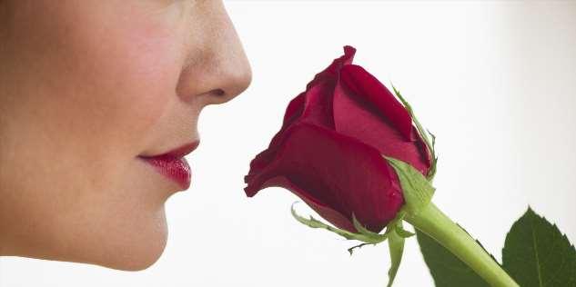 Человеческим духом пахнет. Что можно узнать об окружающих с помощью обоняния