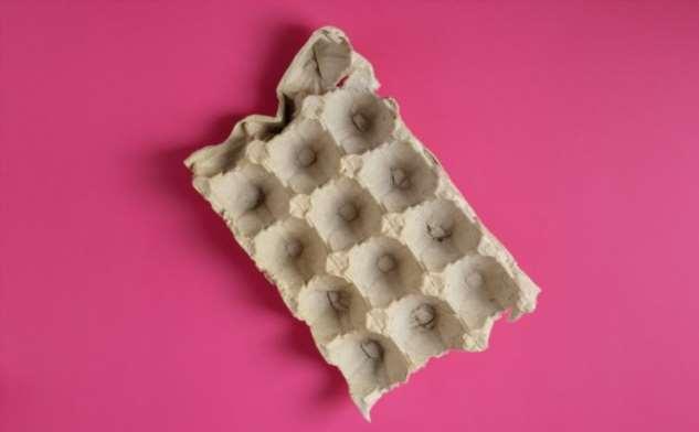 Применение бумажных лотков от яиц