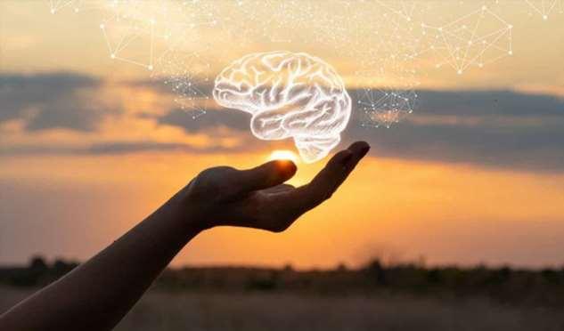 7 замечательных способов вырастить новые нейроны в любом возрасте