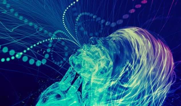 Интуиция – высшая форма интеллекта: вы можете развивать ее до бесконечности