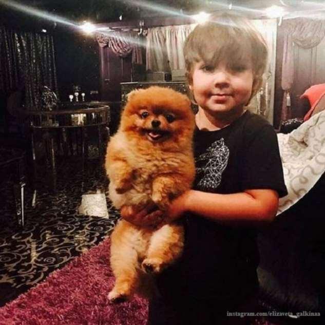 Максим Галкин продемонстрировал вокальные данные 6-летнего сына Гарри