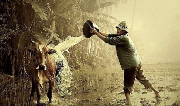 Притча о Будде и фермере с 83 проблемами