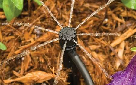 Как система капельного полива может облегчить работу на огороде