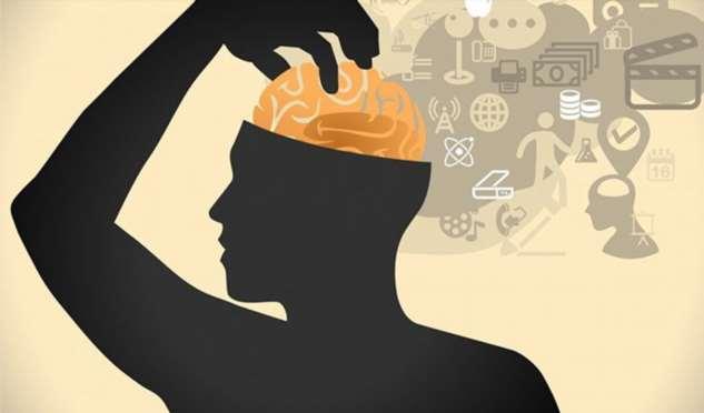 Как синхронизировать оба полушария своего мозга? Совет нейробиолога на каждый день