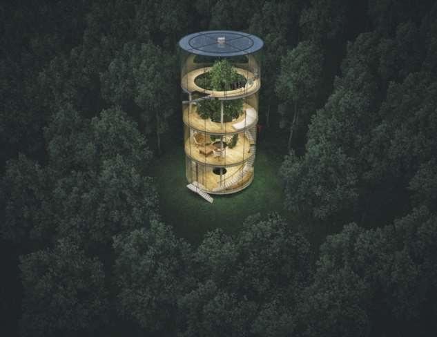 Вэтом доме вместо комнатных цветов растет настоящее дерево