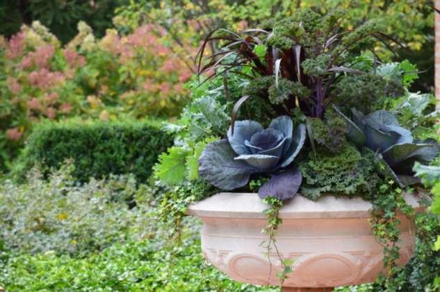 Как правильно: Расположить огород в саду