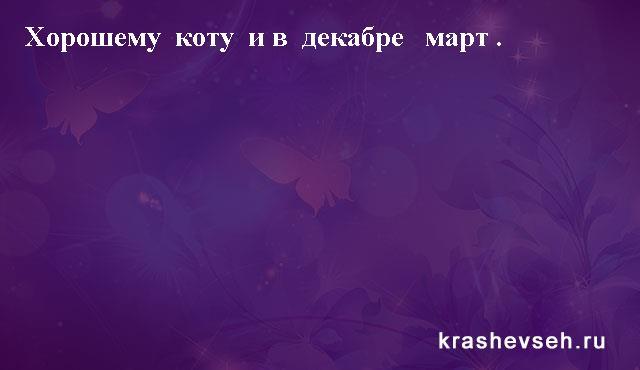 Красивые статусы. Статусы в картинках. Подборка krashevseh-status-krashevseh-status-12010717052020-5 картинка krashevseh-status-12010717052020-5