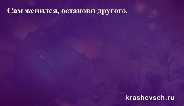Красивые статусы. Статусы в картинках. Подборка №krashevseh-status-27510930052020