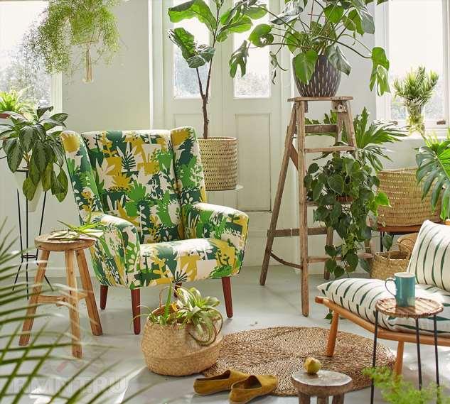 Стеллажи и полки для комнатных растений: виды и примеры