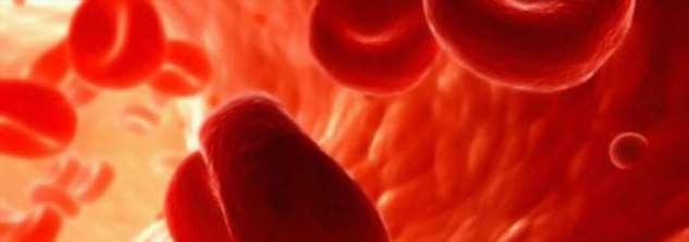 Вся правда о «сгущении крови», гирудотерапии и Аспирине