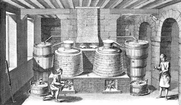 Что ели европейцы во время эпидемии чумы в Средние века