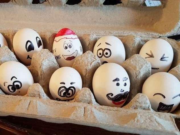 Уникальные свойства куриных яиц