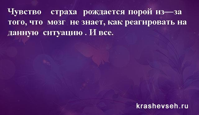 Красивые статусы. Статусы в картинках. Подборка №krashevseh-status-24500616062020