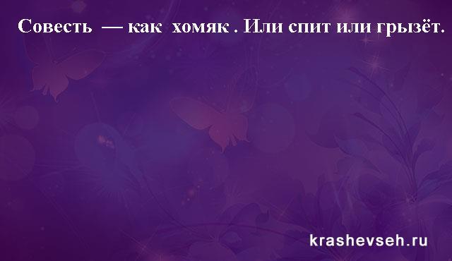 Красивые статусы. Статусы в картинках. Подборка №krashevseh-status-21130612072020