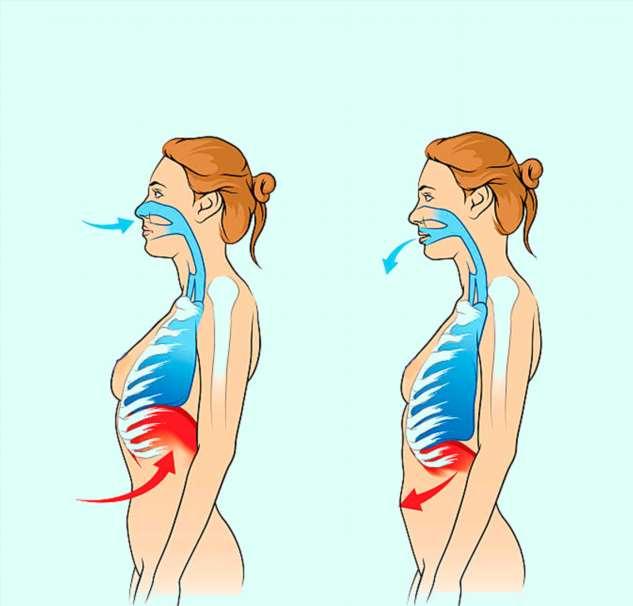 Техника дыхания по Бутейко, которая оздоравливает весь организм