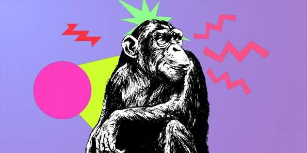 7 самых умных животных в мире, которые могут дать фору людям!