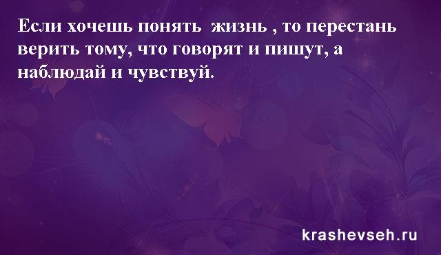 Красивые статусы. Статусы в картинках. Подборка №krashevseh-status-04500330082020