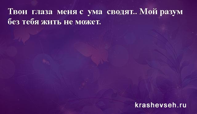 Красивые статусы. Статусы в картинках. Подборка №krashevseh-status-04540511082020