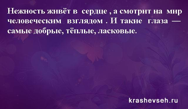 Красивые статусы. Статусы в картинках. Подборка №krashevseh-status-35500330082020