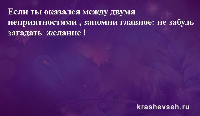 Красивые статусы. Статусы в картинках. Подборка №krashevseh-status-36540511082020