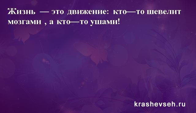 Красивые статусы. Статусы в картинках. Подборка №krashevseh-status-48070126082020