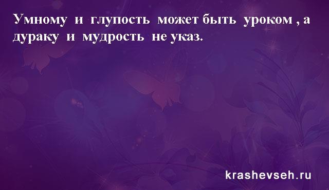 Красивые статусы. Статусы в картинках. Подборка №krashevseh-status-54060126082020