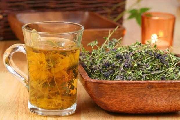 Лечение травами при мочекаменной болезни