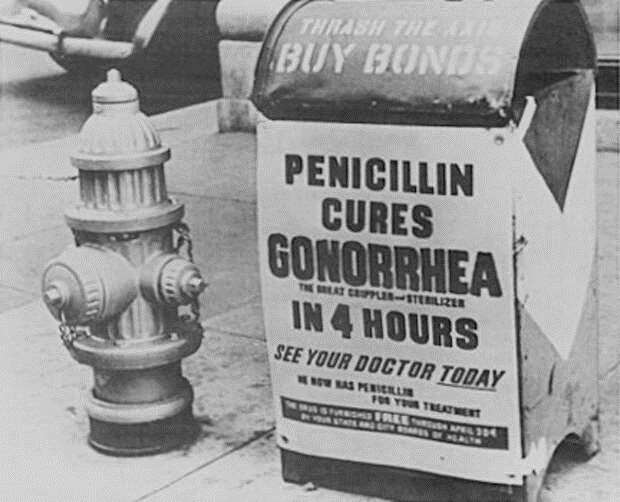 Пенициллиновая гонка