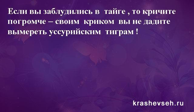 Красивые статусы. Статусы в картинках. Подборка №krashevseh-status-16030715092020