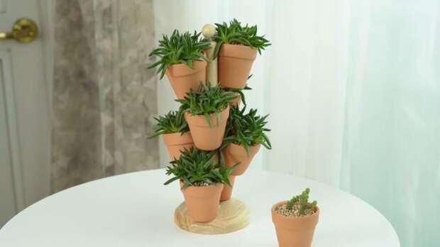 Гениальный мини-сад: впечатляющая идея размещения цветочных горшков