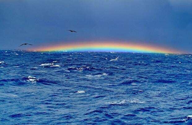 Смертельная опасность «голоса моря» реальна
